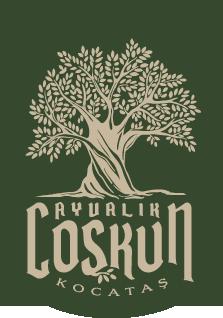 sticky-logo-coskun