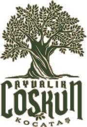 web-logo-stroke